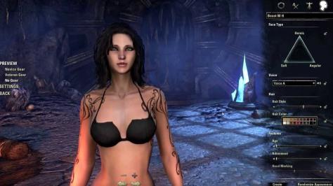 from Elder Scrolls Online